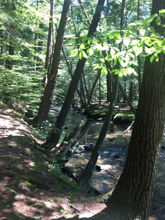 hike july 30